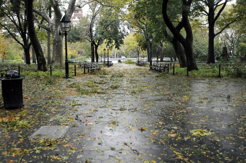 NYU Continues 10 Year Application Streak