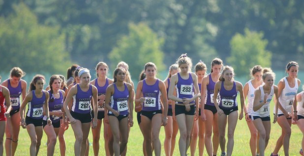 NYU cross country comes in twenty second place at nationals