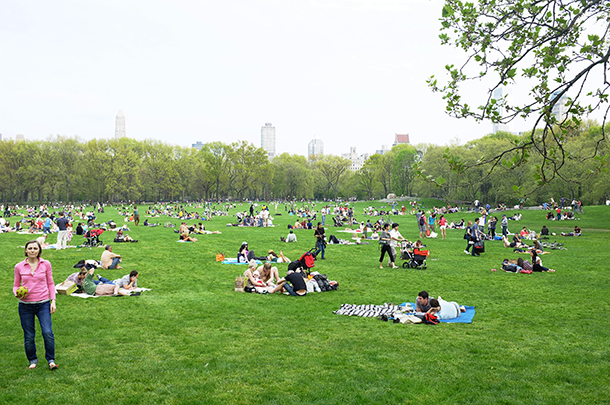 Report applauds city's park spaces