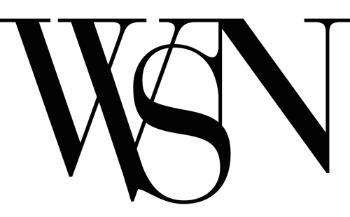 wsn logo rectangle