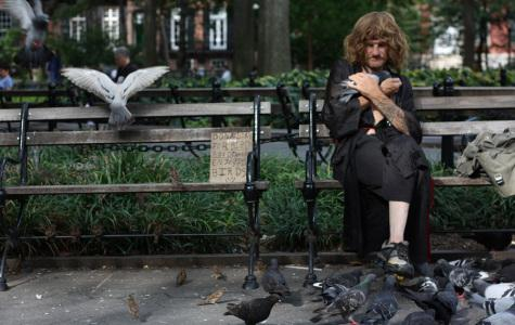 Top 5 Quintessential people of Washington Square Park
