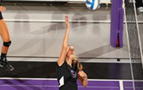 NYU loses in weekend volleyball tournament
