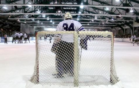 Violets goalie Sam Daley recovering from surgery