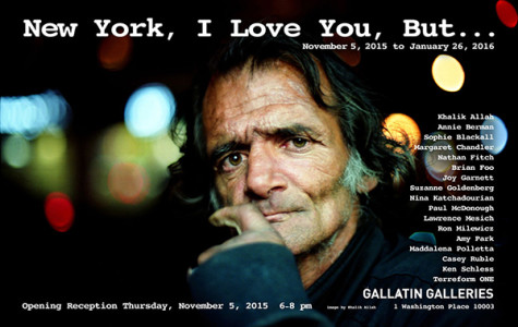 Gallatin gallery writes love letter to New York