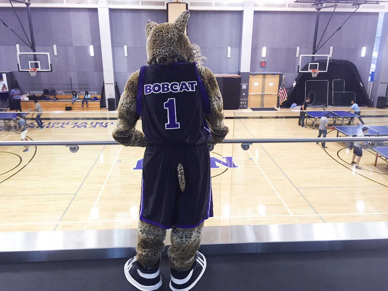 The NYU's mascot makes appearances on campus at special events, but calls the basketball games their primary home.