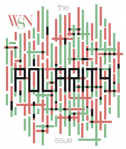 The Polarity Issue