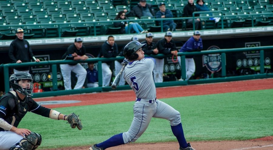 Adrian+Spitz+batting+during+the+NYU+baseball+team%E2%80%99s+spring+break+tournament+in+Florida%2C+March+20.+Spitz+transferred+to+NYU+from+Northeastern+in+2015%2C+and+has+earned+honours+from+the+University+Athletic+Association+and+the+Eastern+College+Athletic+Conference+among+others.