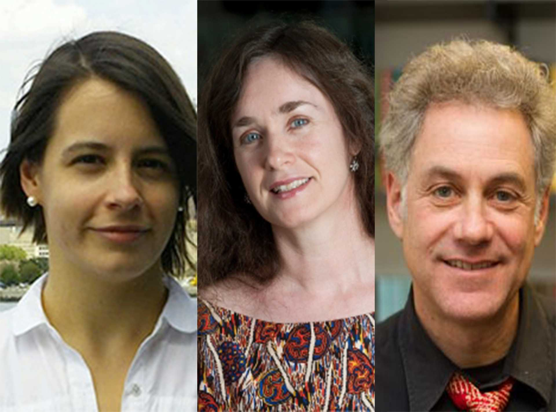 Stefanie Goyette, of the Liberal Studies program, Moya Luckett, of Gallatin, and Michael Peachin, the director of undergraduate studies for classics, are just a few of the numerous professors at NYU to have released books.