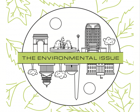 The Environmental Issue