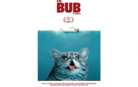 Tribeca film documents Internet cat video sensation