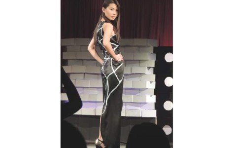 Asian Culture Union fashion night puts local, school talent on display