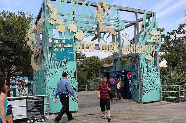 New York Aquarium to remain closed for rest of year
