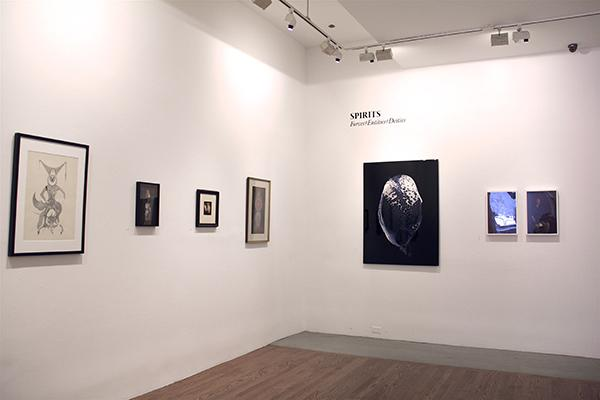 Found within the 80 Washington Square East Gallery, the exhibit Language of the Birds: Occult & Art, curated by Pam Grossman, is open to the public until February 13, 2016.