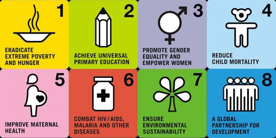 the united nations millennium development goals and its results in puerto rico and the united states