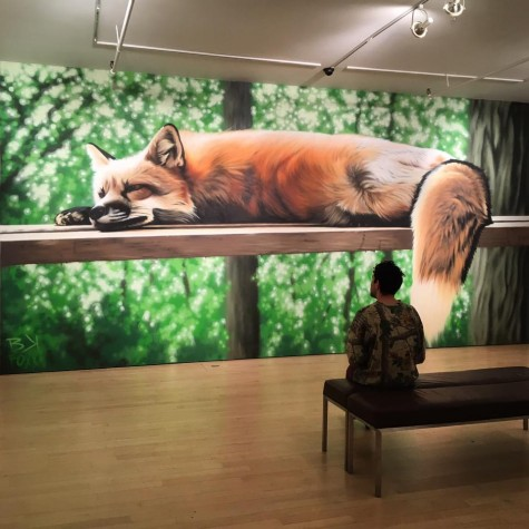 Street Artist Creates Show to Advocate for Wildlife
