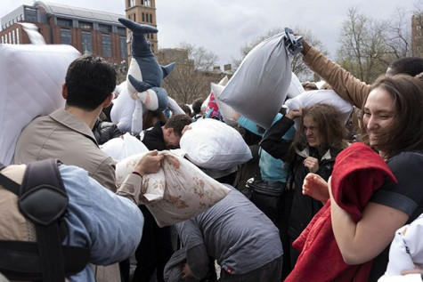 Pillow Fight Ruffles Feathers in WSP