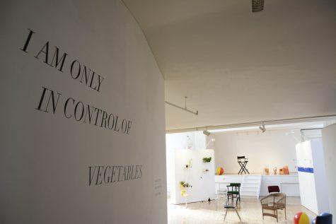 Steinhardt Trio's Exhibit Pokes Fun at Control