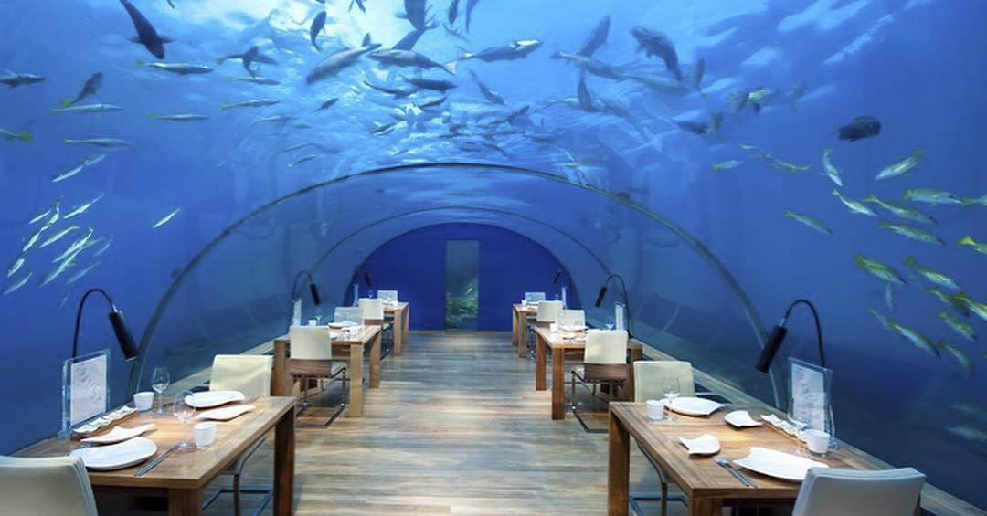 Ithaa is a restaurant in the Maldives that is completely underwater, giving you the opportunity to eat under the sea.