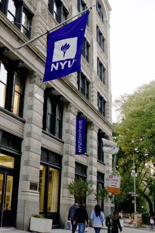 Steinhardt Adds Disability Studies Minor