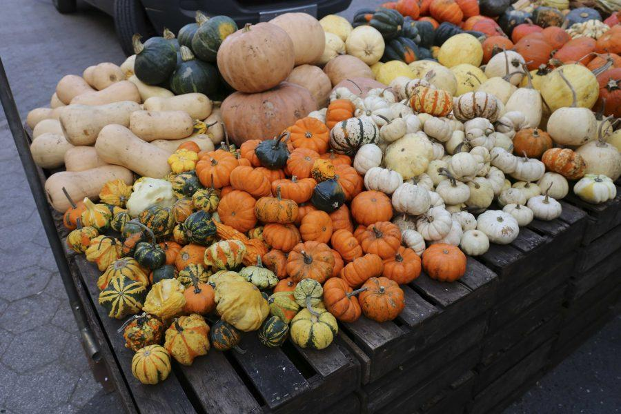 It%E2%80%99s+October%2C+which+means+pumpkins+and+gourds+of+all+shapes+and+sizes+are+available+at+the+Union+Square+Greenmarket.%0A