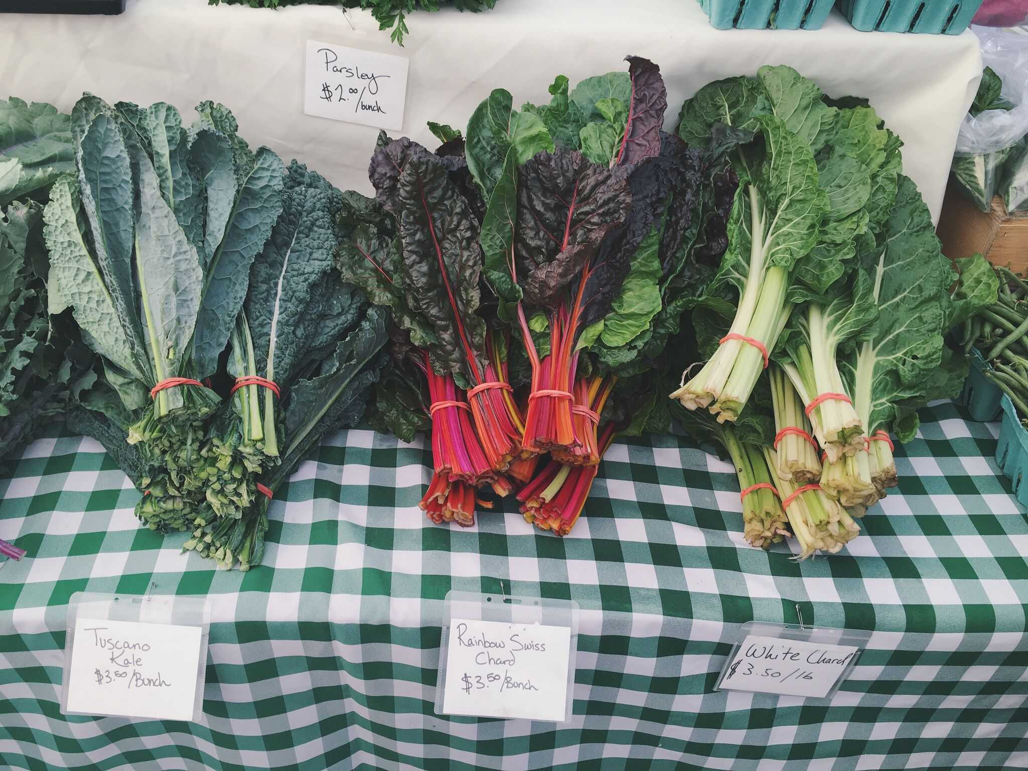 Kale and Swiss Chard at Union Square Greenmarket.