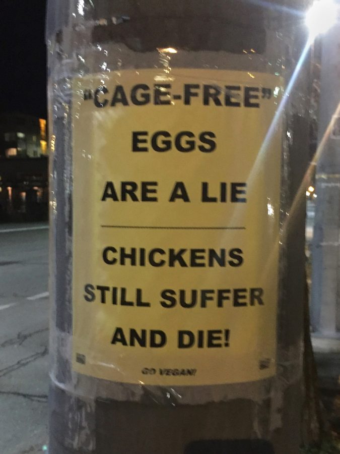 The+labels+on+food+products+can+often+be+misleading+because+the+vocabulary+they+use.++%22Cage+free%22+labels+for+poultry+products+are+meaningless+because+most+birds+are+not+typically+caged.