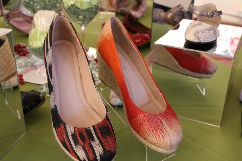 Nene Shoes 2017 Presentation