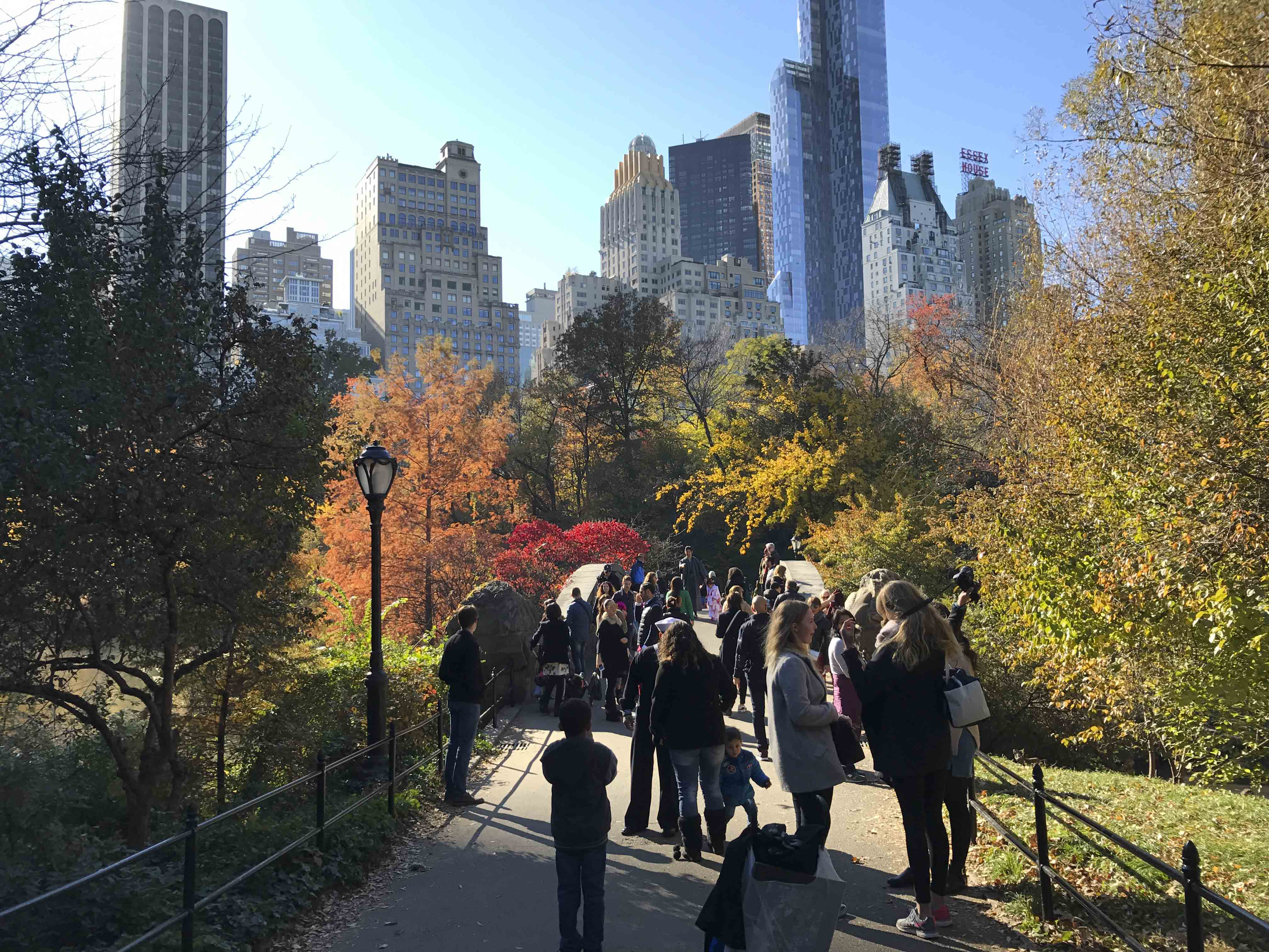 Though not Washington Square Park, Central Park provides a lovely panoramic view of the lake. It's perfect for those staying over during spring break and looking for a new park to explore in depth.