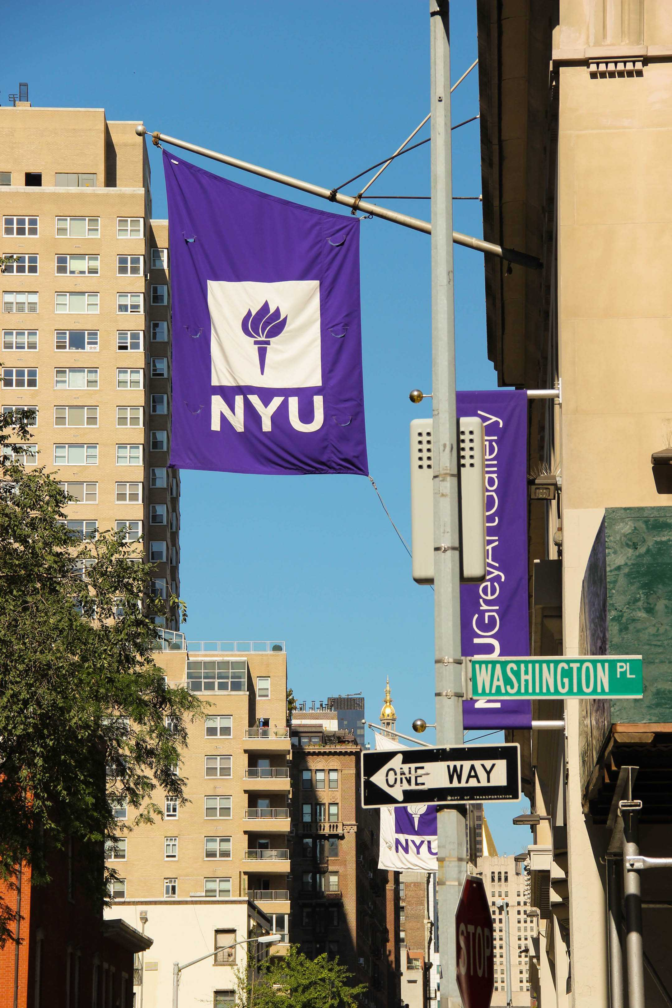 Because NYU receives federal funding, the university's office of human resources is required to guess the racial and ethnic identities of employees who do not self-report that information.