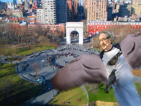 HUMOR: Pigeon Man Grants Final Wish Before Flying South For Winter