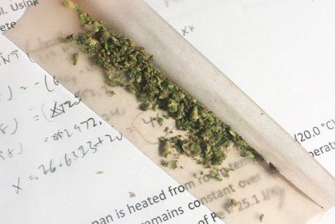 Study, Drugs and NYU