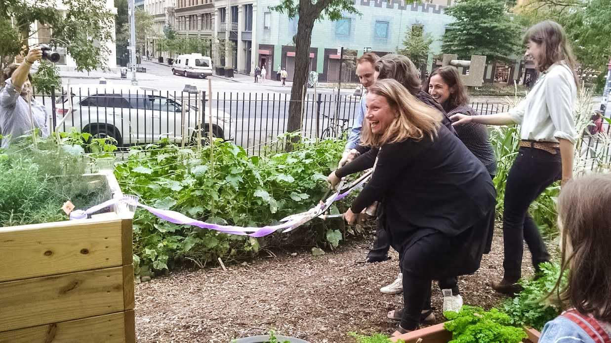 NYU's Urban Farm Lab reopened on Oct 11. It was founded two years ago by NYU Food Studies professor Amy Bentley as a place for food study majors to harvest crops right in the city.