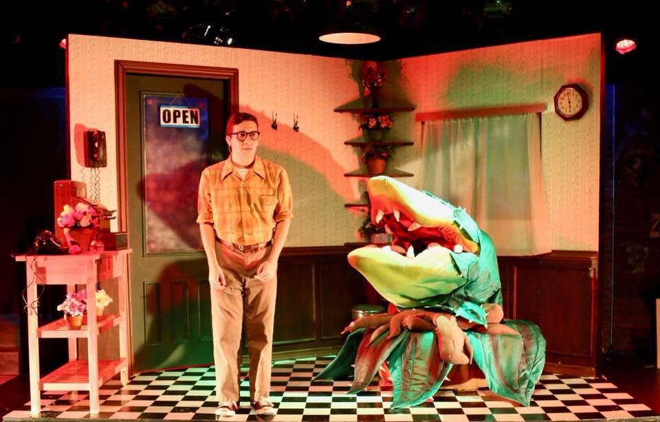 Steinhardt senior Daniel Youngelman plays the lead role of Seymour in Little Shop of Horrors.