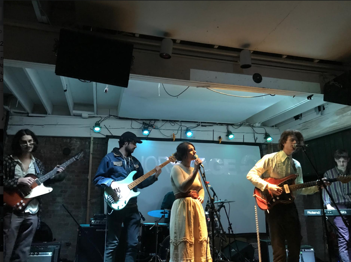 Gallatin junior Alex Carr performed with his band at Sunnyvale in Brooklyn last Saturday.
