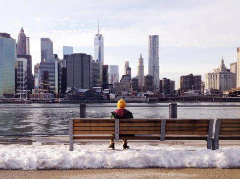 NYU Divest Letter Drop Demands Hamilton and Board Response