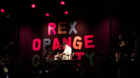 Rex Orange County Makes Lively US Debut