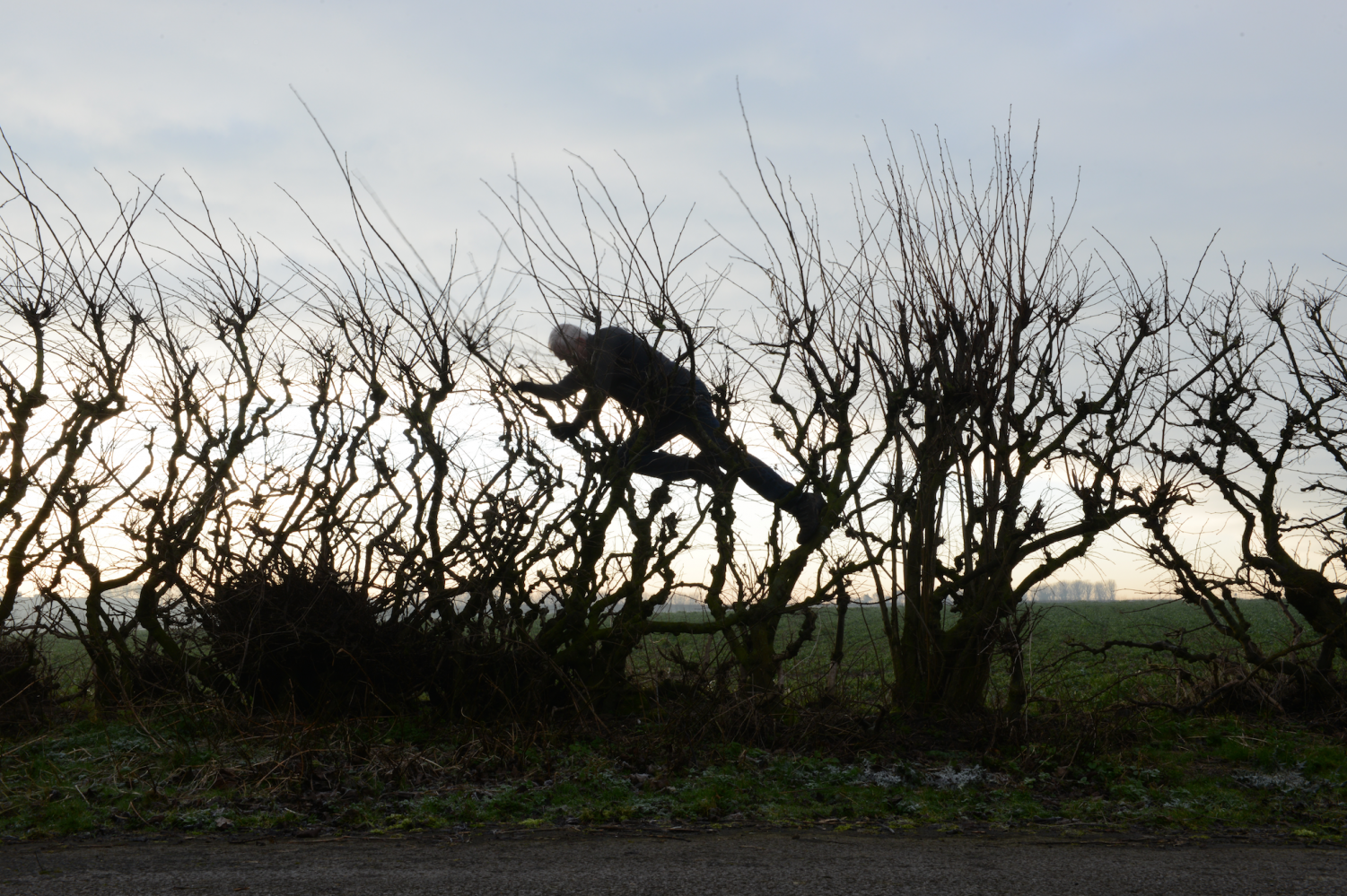Andy Goldsworthy in LEANING INTO THE WIND, a Magnolia Pictures release.