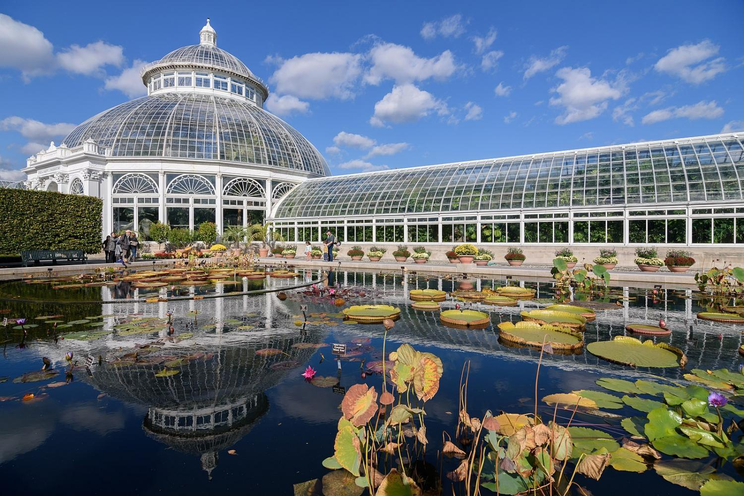 The New York Botanical Garden, which will be holding a special Earth Day Celebration at the end of its annual Orchid Show.