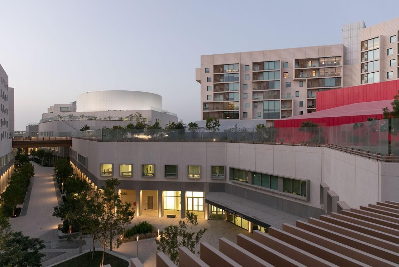 The NYU Abu Dhabi campus.