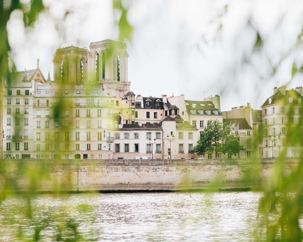 Notre Dame Cathedral, seen from across the Seine.