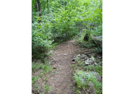 Fitness Finds: Take it to the Trails