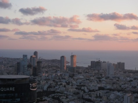Exit Strategy: A closer look at the NYU Tel Aviv evacuation
