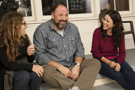 Gandolfini, Louis-Dreyfus charm in 'Enough Said'